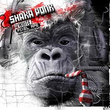 Shaka Ponk - Story O' My LF